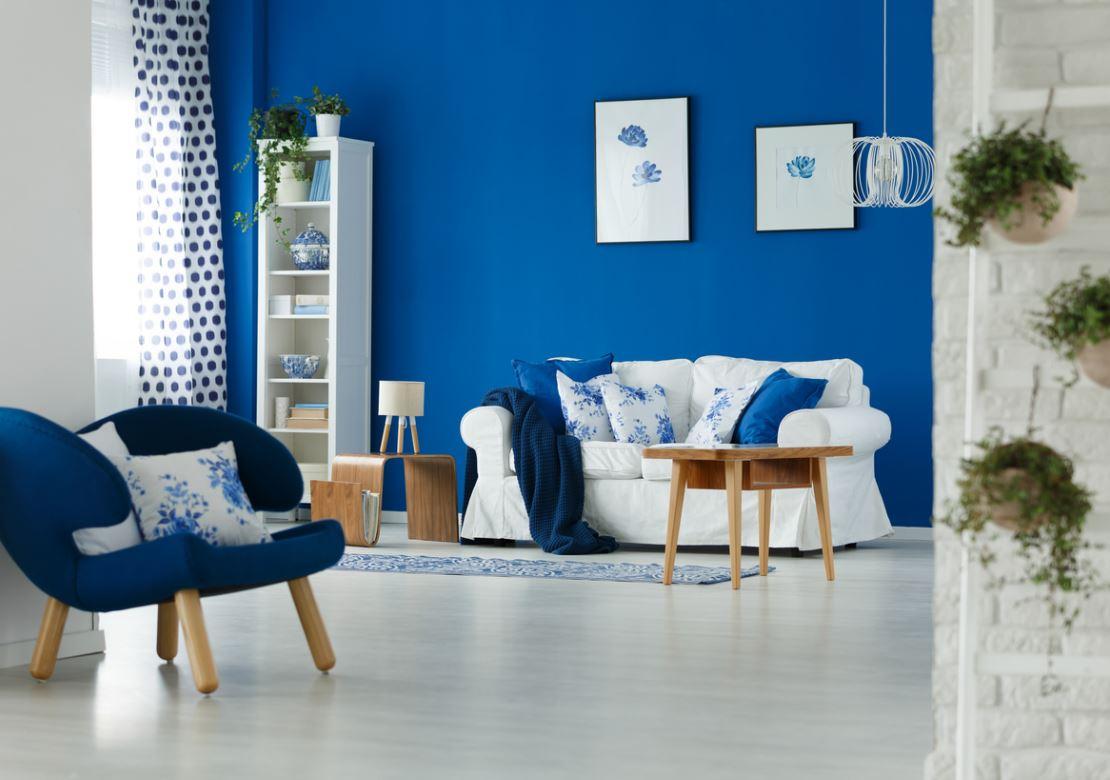 intérieur bleu