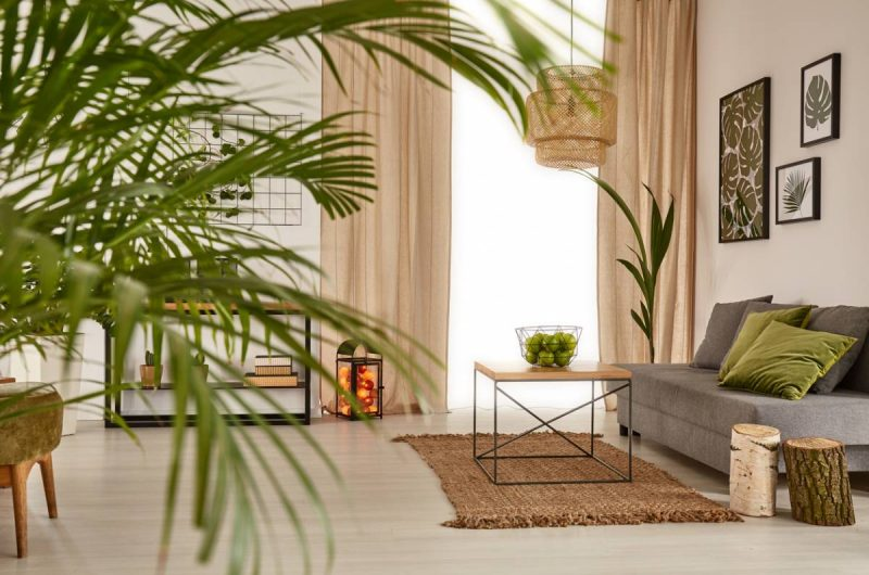 cocooning ambiance comment choisir rideau